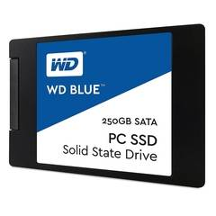 250GB Western Digital SSD Blue